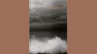 "Buchcover ""Dark Waters"""