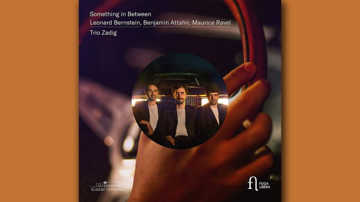 """Something in Between"" Trio Zadig"