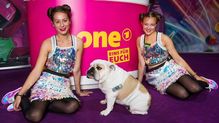 One Stand mit Bulldogge (Quelle: rbb)