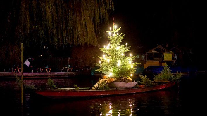Lisas Erster Weihnachtsbaum.Advent Im Spreewald