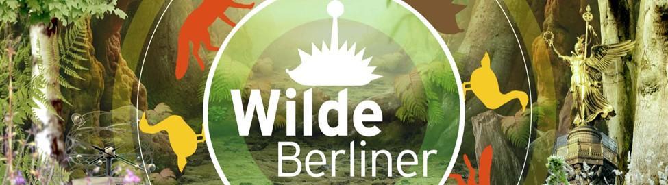 Logo Wilde Berliner Quelle Rbb