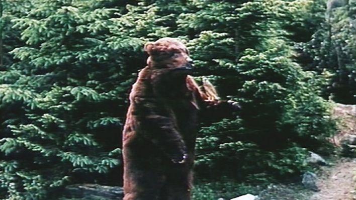 Märchenfilm Defa 1978 Schneeweißchen Und Rosenrot Rbb