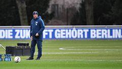 Pal Dardai steht während des Trainings von Hertha BSC mit nachdenklichem Blick auf dem grünen Rasen. (Quelle: imago/Matthias Koch)