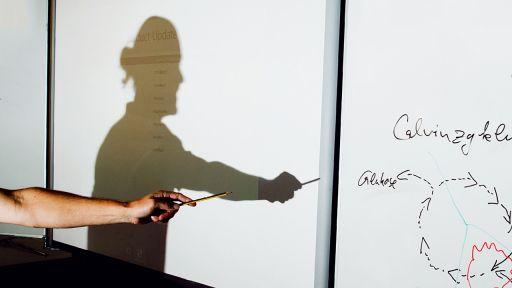 Symbolbild: Ein Lehrer wirft am einen Schatten auf eine Tafel (Quelle: dpa/Stratenschulte) | dpa/Stratenschulte