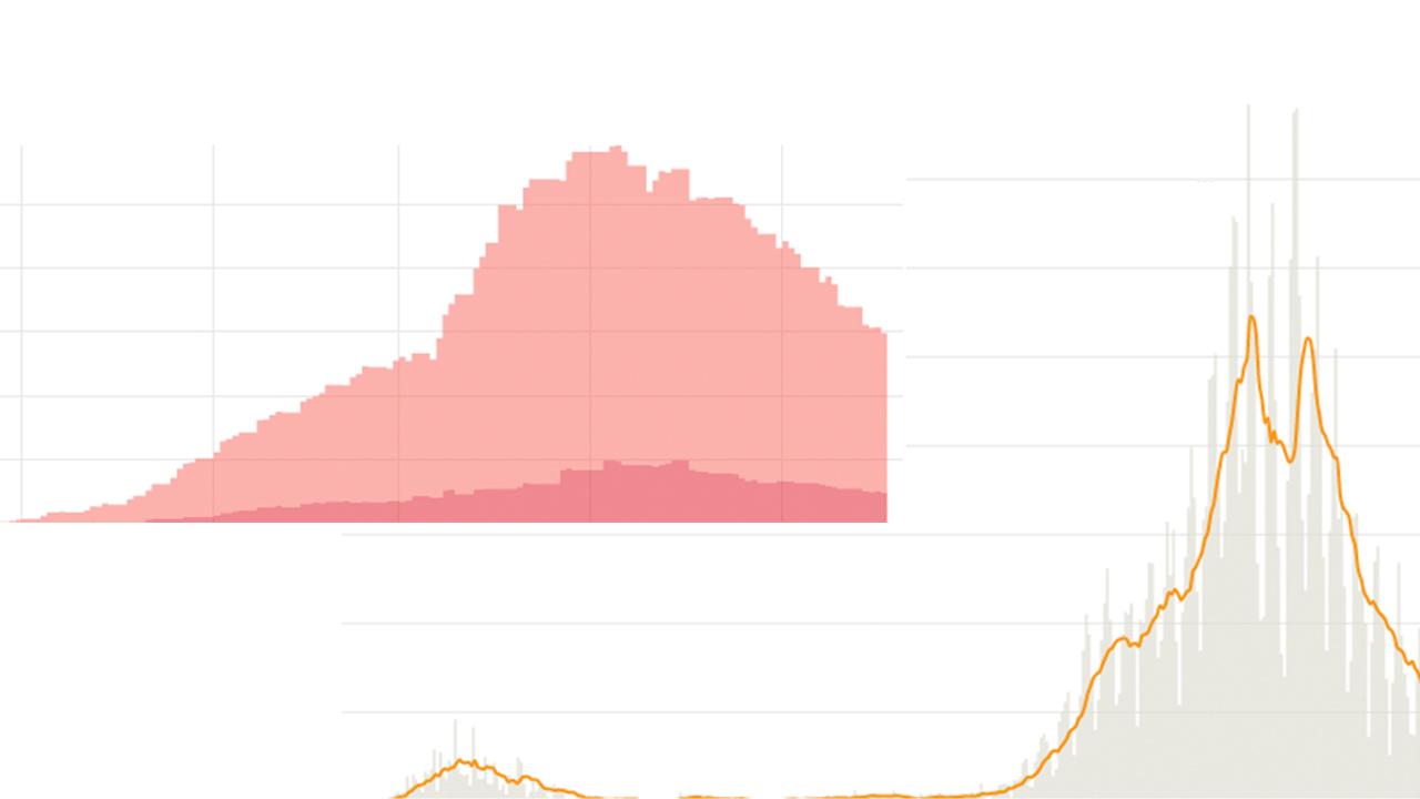 Eine Grafik der Corona-Fallzahlen in Brandenburg (Bild: rbb)