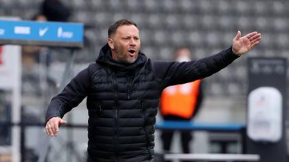 Hertha-Trainer Pal Dardai (Quelle: imago images/Contrast)
