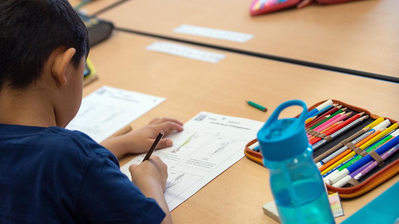 Ein Kind füllt während des Unterrichts in einer Grundschule ein Übungsblatt aus (Quelle: dpa/Monika Skolimowska)