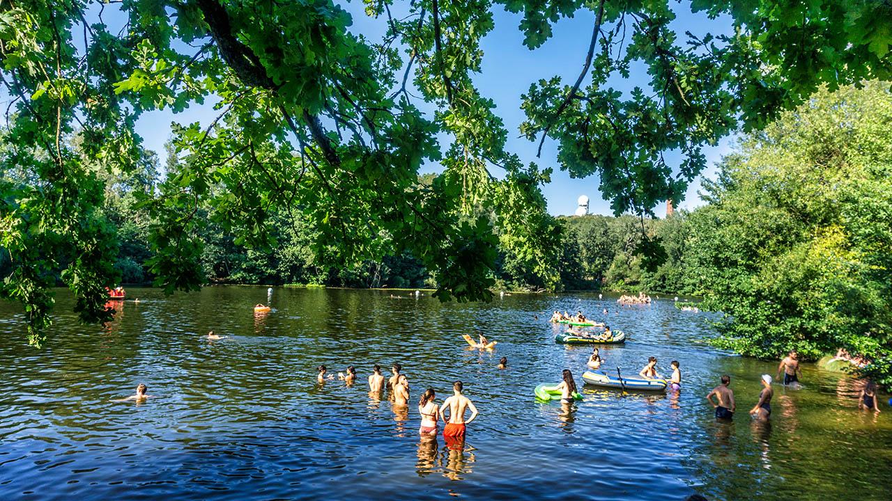 Archivbild: Der Teufselssee in Berlin Grunewald im Sommer. (Quelle: dpa/GTI)
